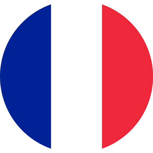 france flag round small